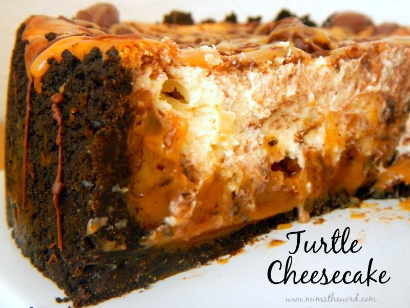 Turtle Cheesecake - NumsTheWord