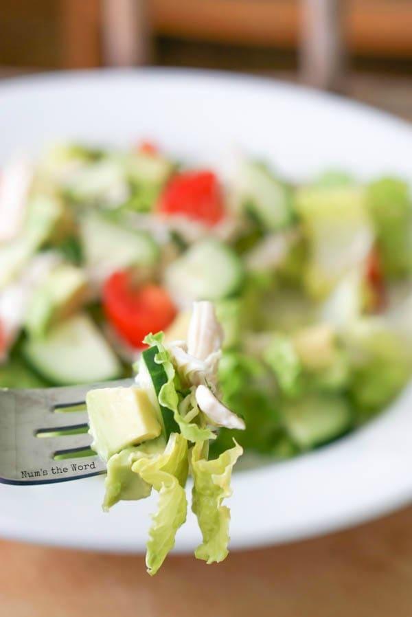 Chicken & Avocado Salad - fork full with salad, avocado and chicken