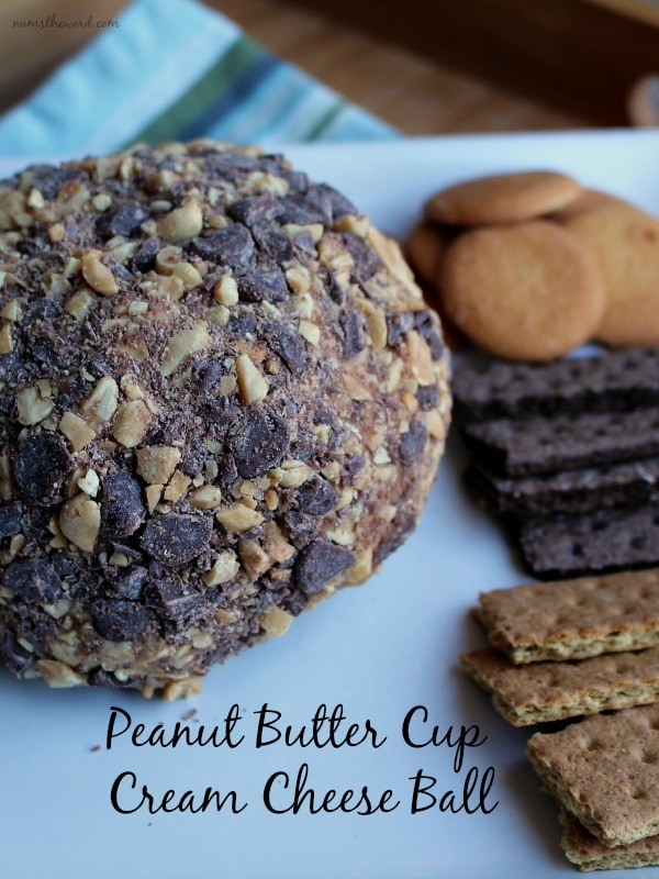Peanut Butter Cup Cream Cheese Ball with 40 other Cocktail and Appetizer Recipes to get your party started!