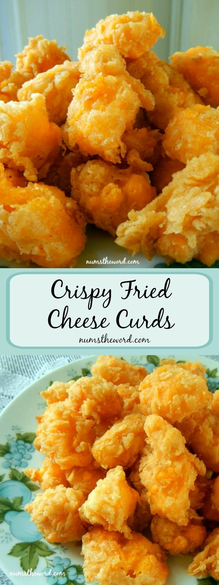 Crispy Fried Cheese Curds LONG