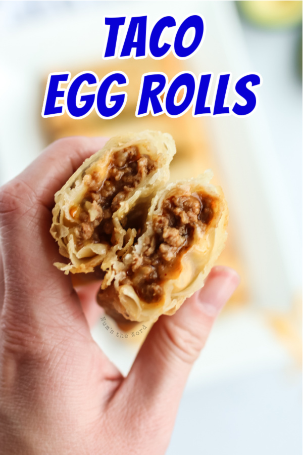 main image for recipe of a hand holding a cut in half taco egg roll to show filling