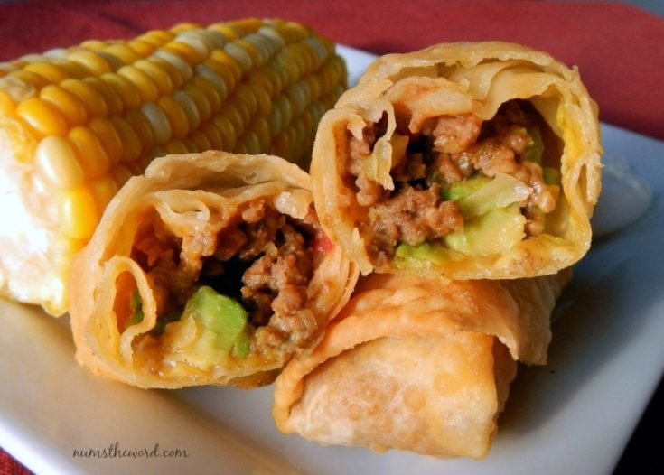 Taco Egg Rolls - Close up on plate