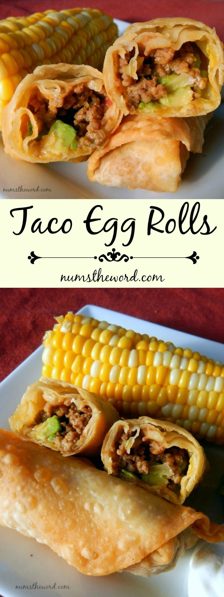 Taco Egg Rolls - Pinterest long pin collage