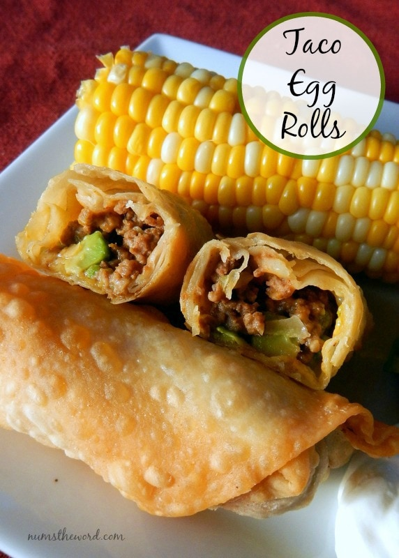 Taco Egg Rolls - Main image on website - looking down at egg rolls