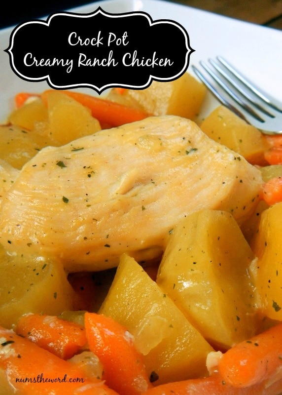Crock Pot Creamy Ranch Chicken