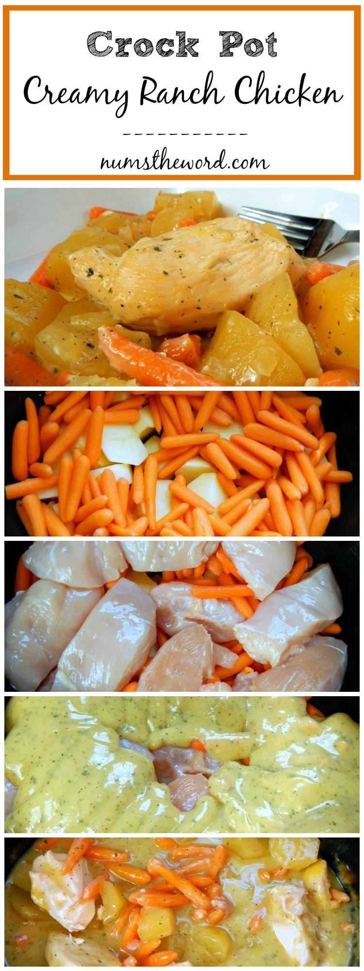Crock Pot Creamy Ranch Chicken Numstheword