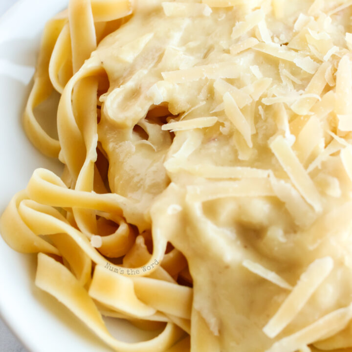 zoomed in image of fettuccine alfredo on a plate.