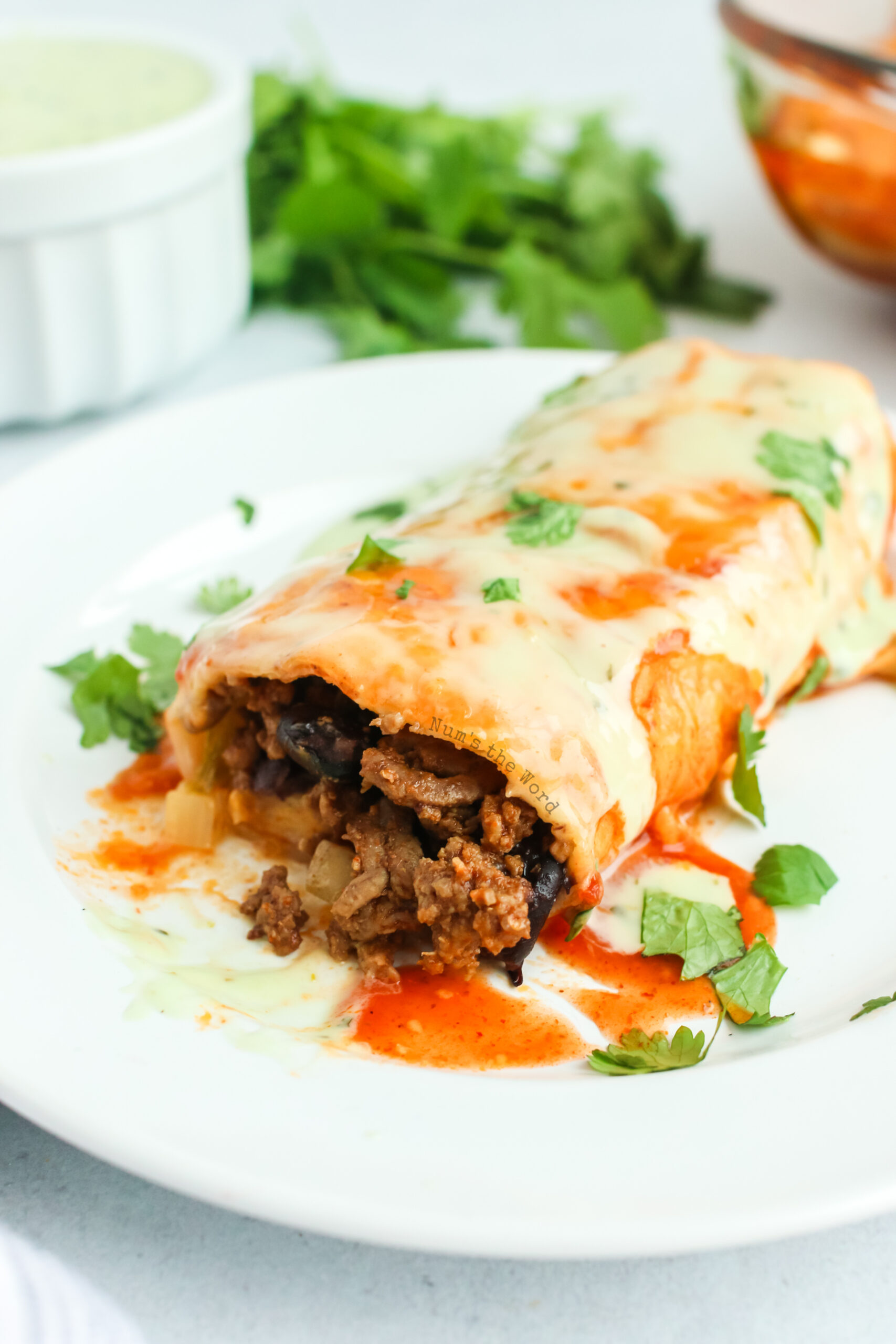 side view of burrito on a plate with meat showing