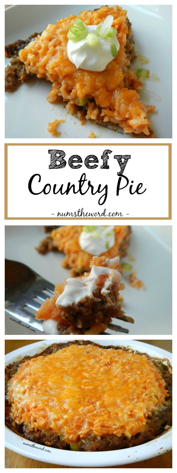 Beefy Country Pie
