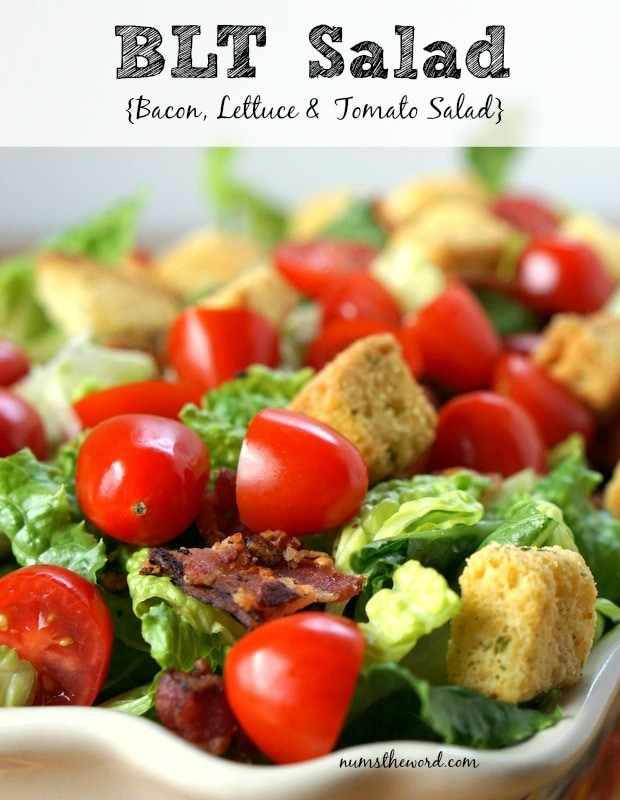 BLT Salad - Main image for recipe of salad in a bowl ready to be served