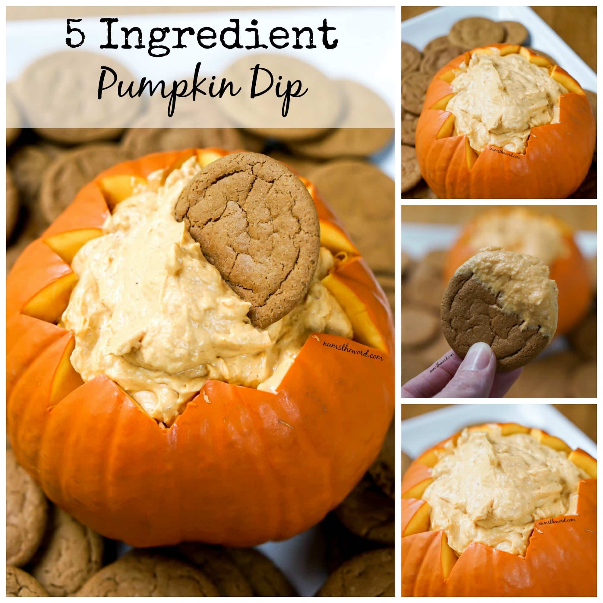 5 Ingredient Pumpkin Dip