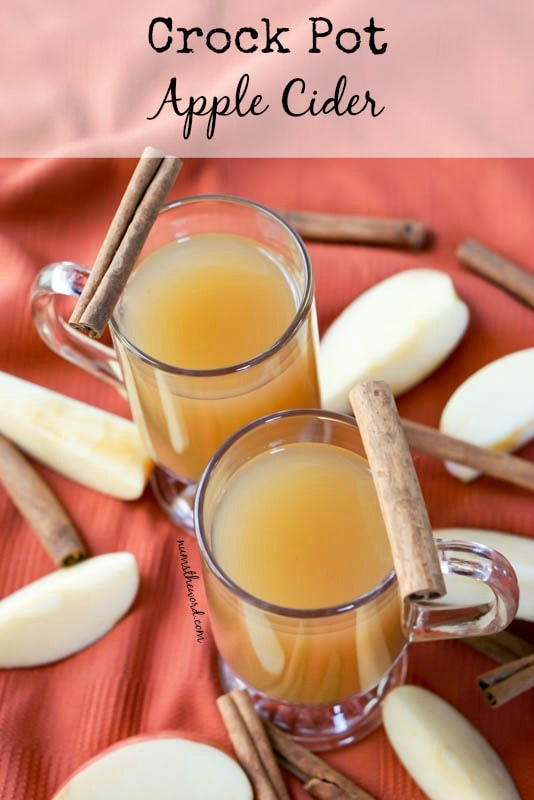 Crock Pot Apple Cider - Main imagefor recipe