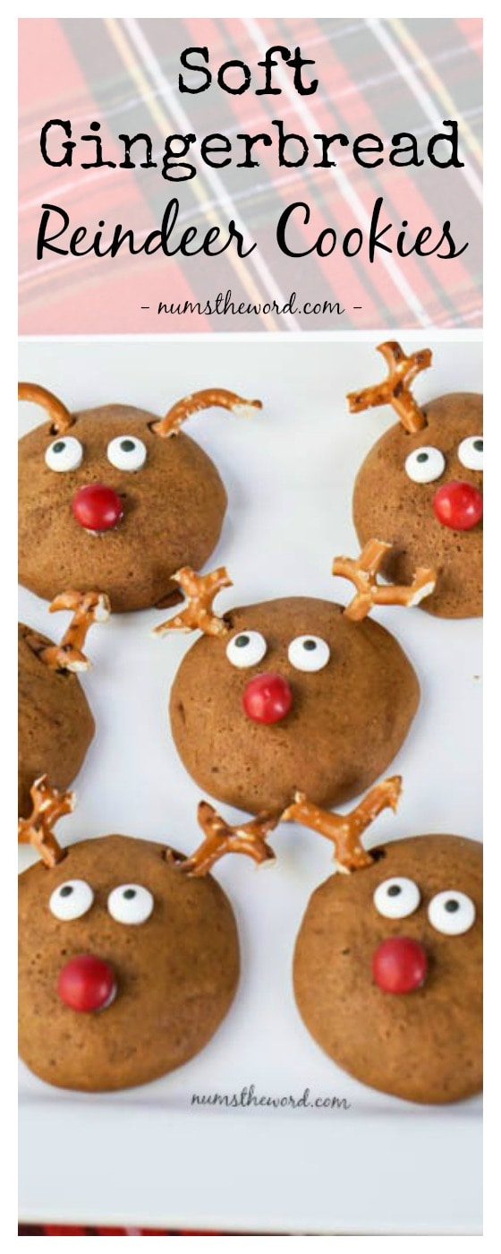 how to keep gingerbread cookies soft