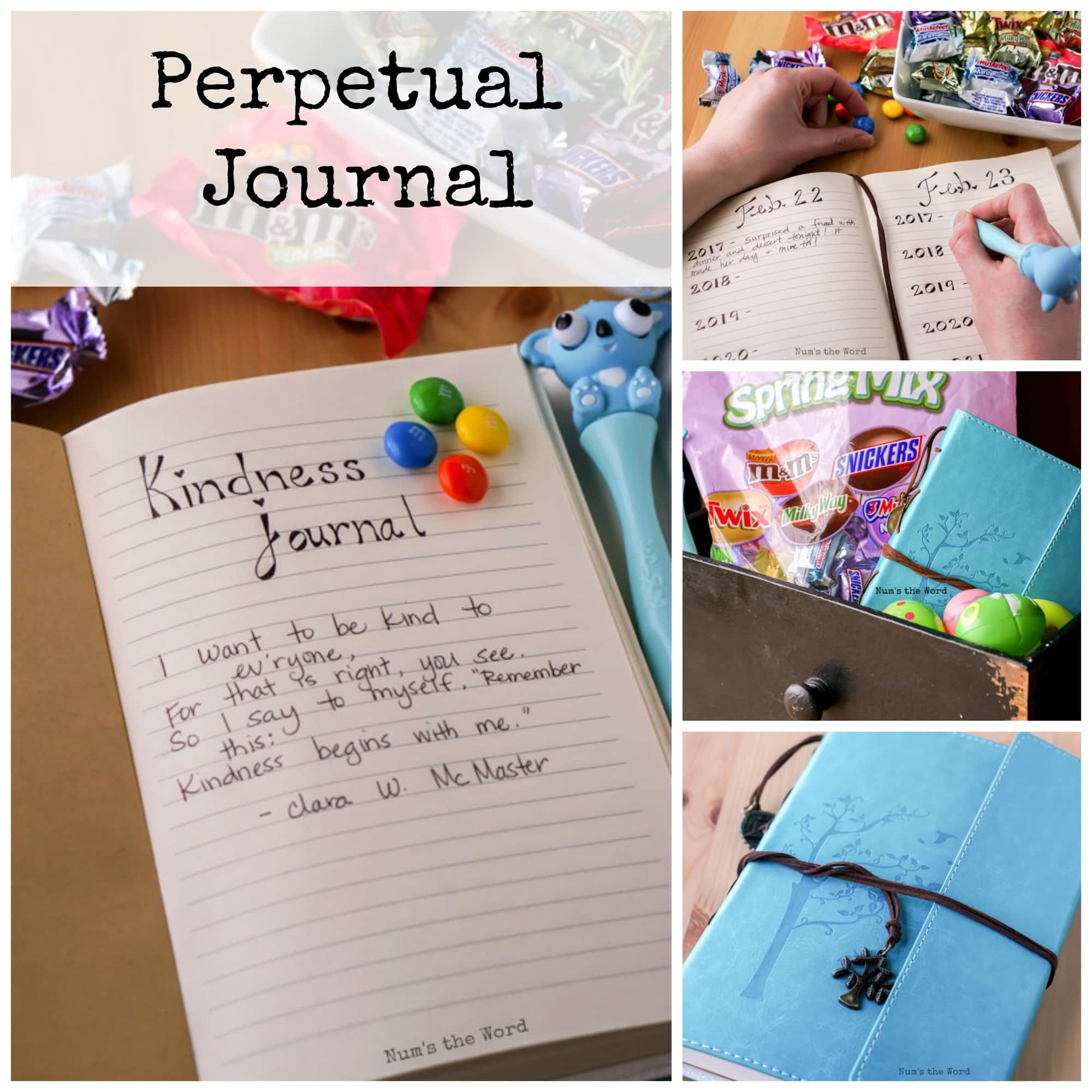 Perpetual Journal