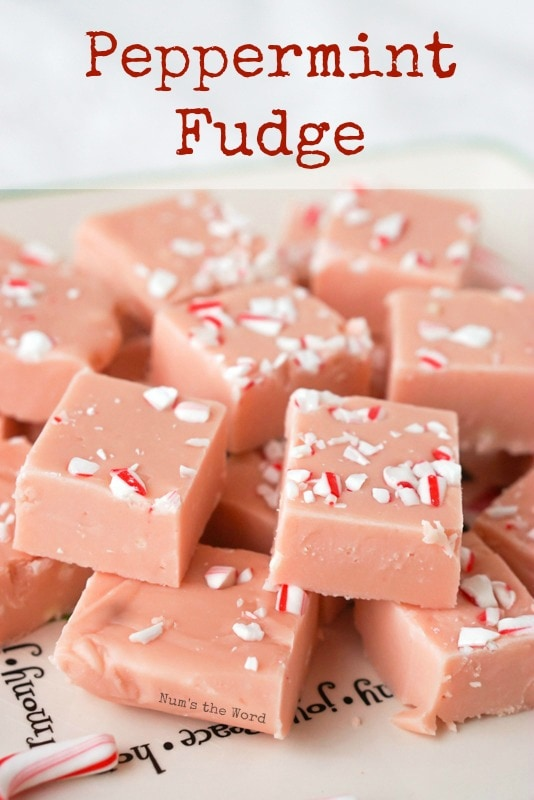 Peppermint Fudge - main image for recipe