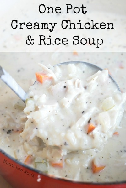 One Pot Creamy Chicken & Rice Soup - main image for recipe