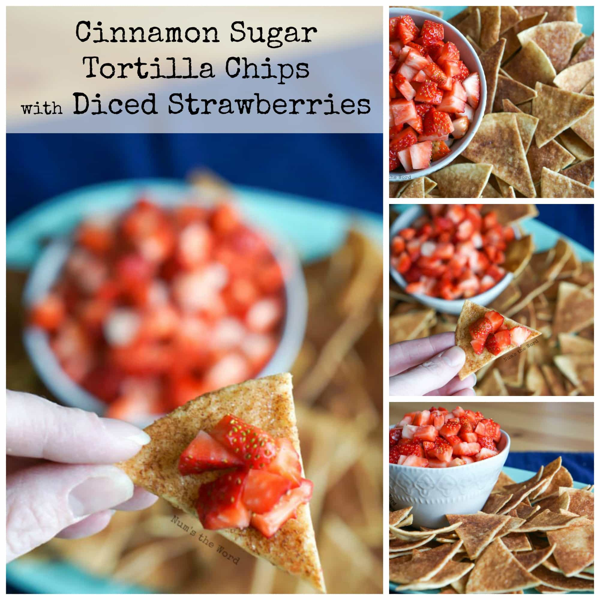 Cinnamon sugar tortilla chips with diced strawberries for What can i make with tortilla chips