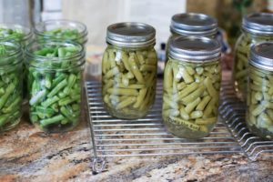 How to Can Green Beans - uncooked jars of green beans next to cooked green beans to show color difference.