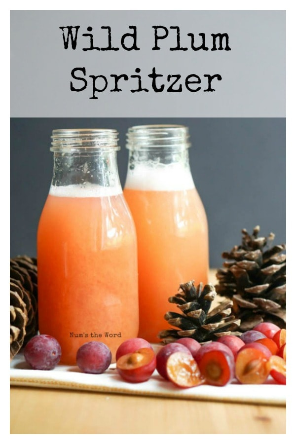 Wild Plum Spritzer