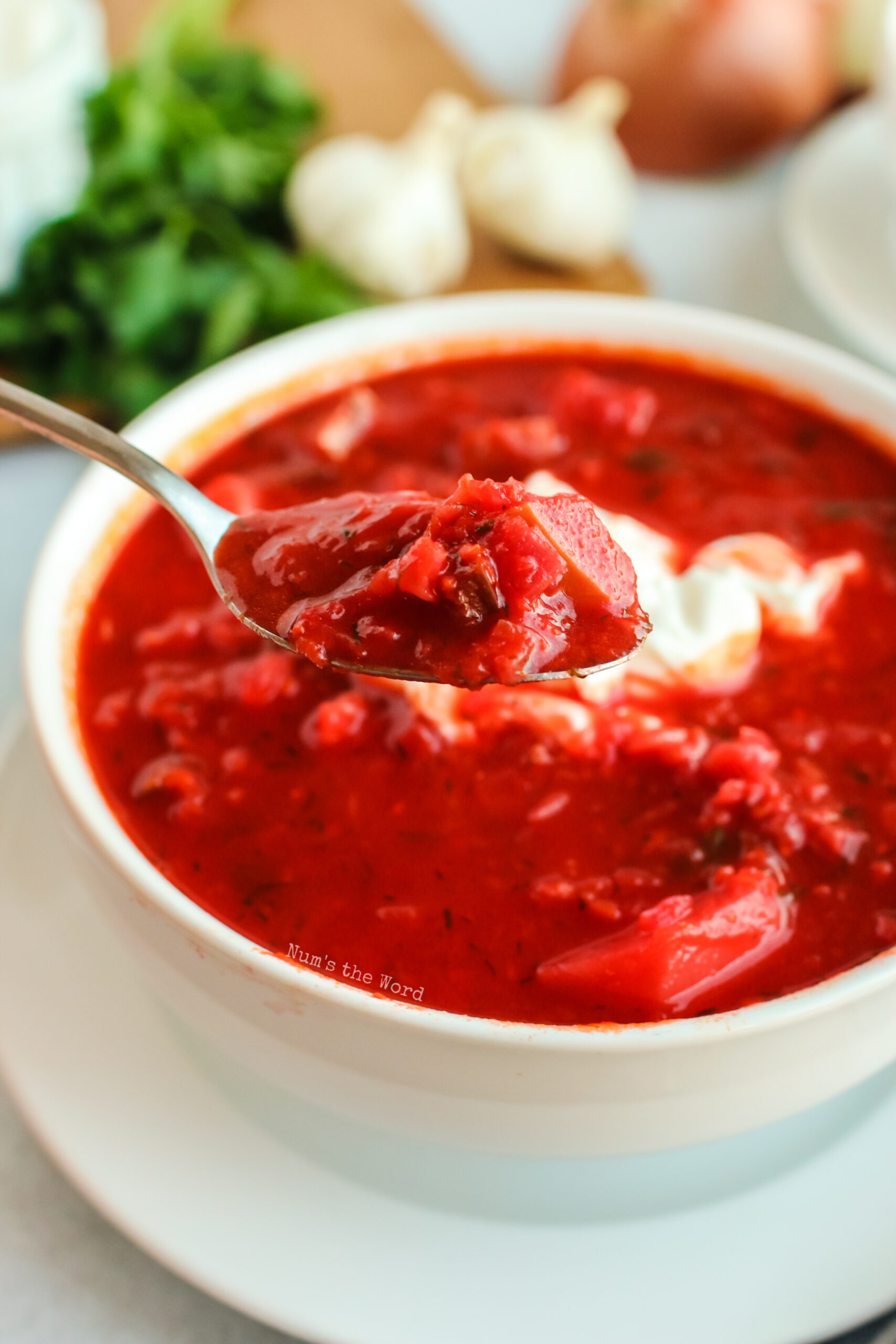 spoon holding up a portion of borscht ready to be eaten.