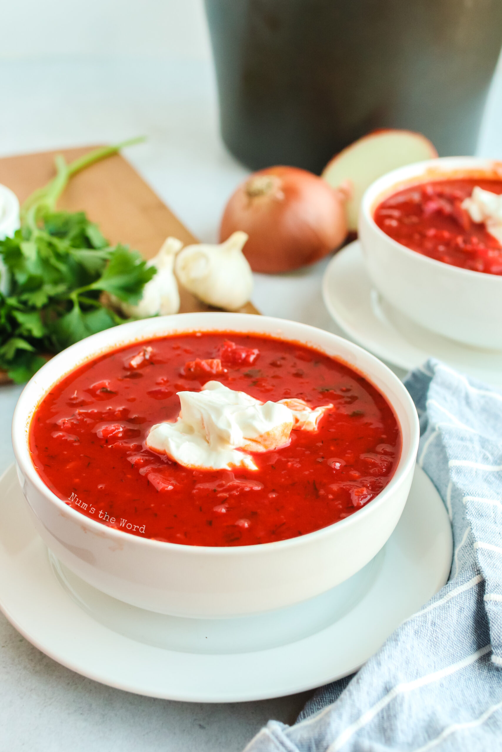 side view of two bowls of borscht with sour cream on top