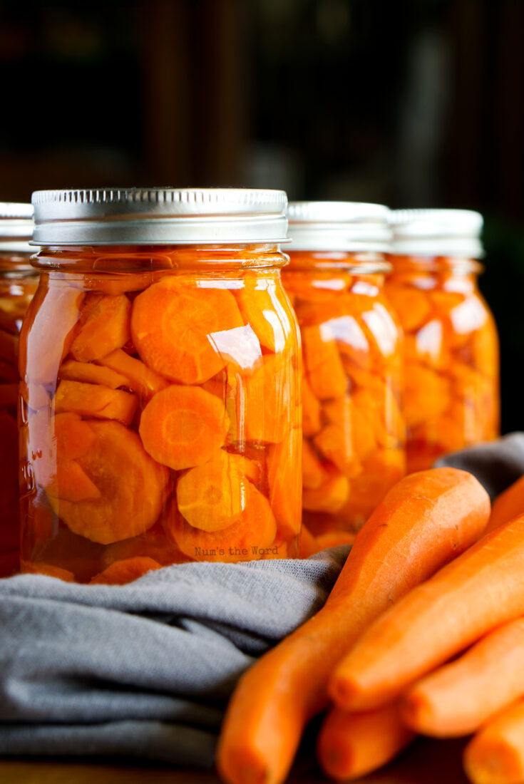 Side view of canned carrots and fresh carrots