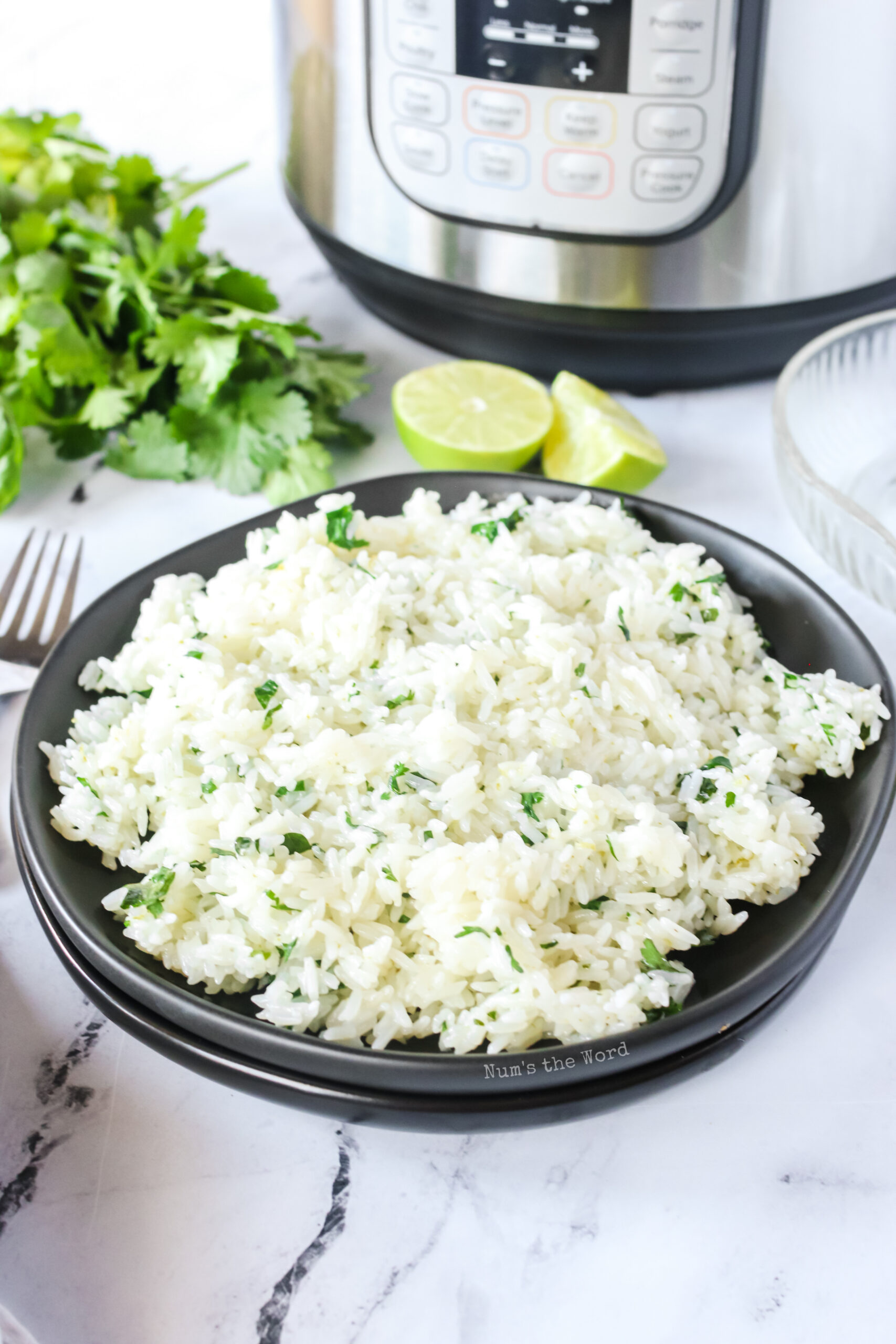 fluffy cilantro lime rice in a bowl, ready to eat